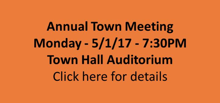 Annual Town Meeting Logo